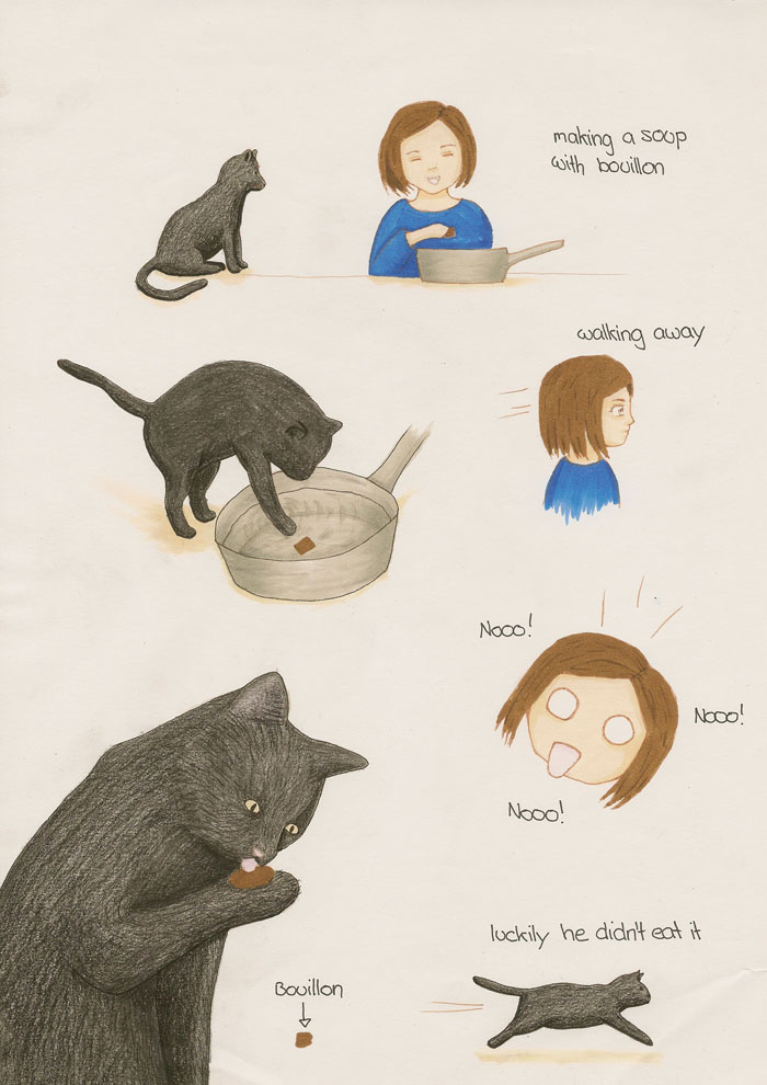 Bouillon Cat Comic