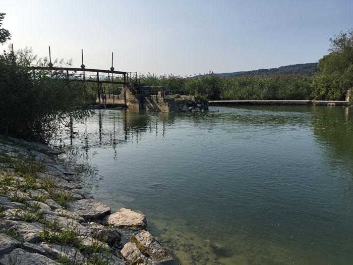 Fluss Greifensee Schweiz